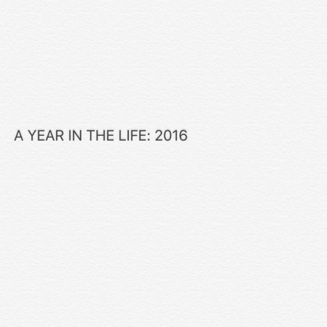A Year in the Life: 2016