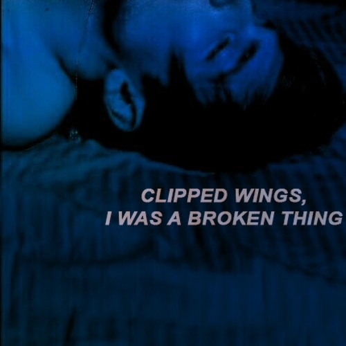 Clipped Wings | Dick Grayson