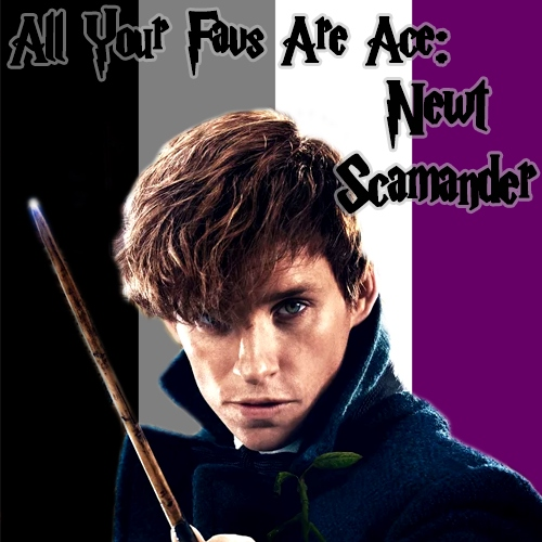 All Your Favs Are Ace: Newt Scamander