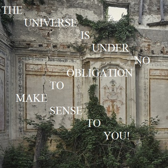 THE UNIVERSE IS UNDER NO OBLIGATION TO MAKE SENSE TO YOU!