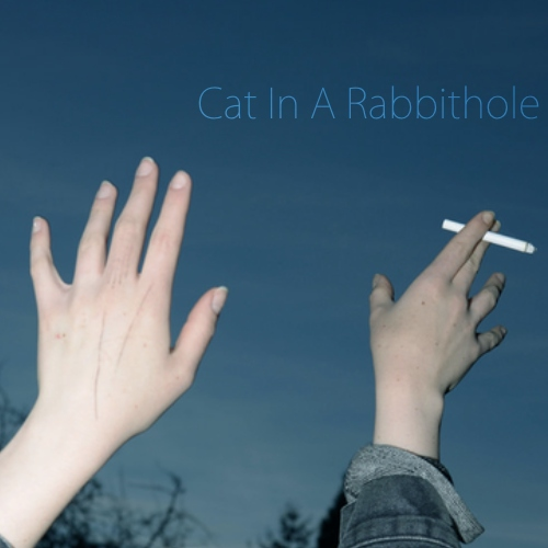 Cat In A Rabbithole