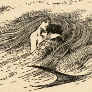Outing the Mermaid: A Novel of Love, Fear & Misogyny