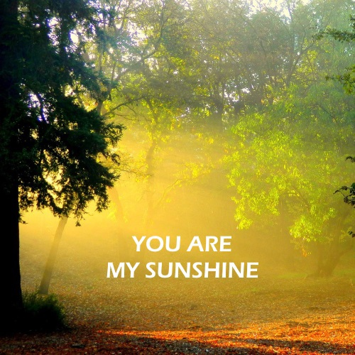 //You Are My Sunshine//
