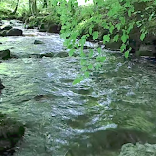 ♨ Streams & Babbling Brooks