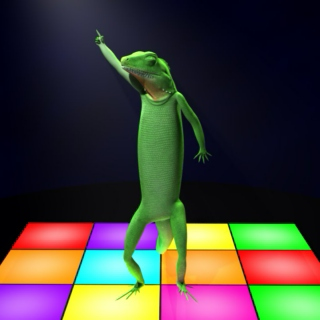 Dance. Pop. Lizard.