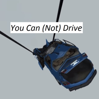 You Can (Not) Drive