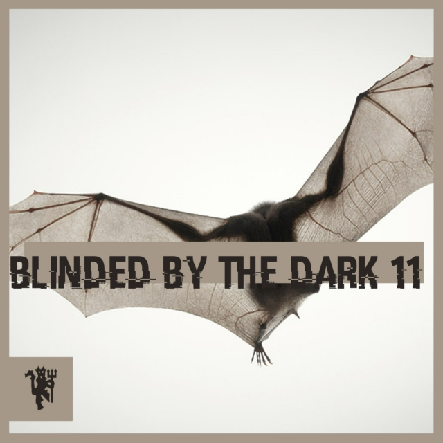 Blinded By The Dark 11