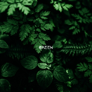 [colors]: green
