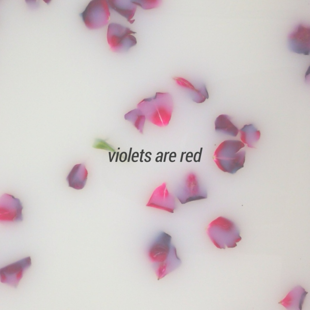 violets are red