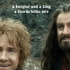 a burglar and a king- thorin/bilbo mix