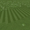 Btrxz: 2MOW Or MOW2 (Lawn Series V)