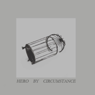 hero by circumstances