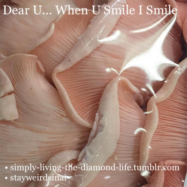 Dear U... When U Smile I Smile