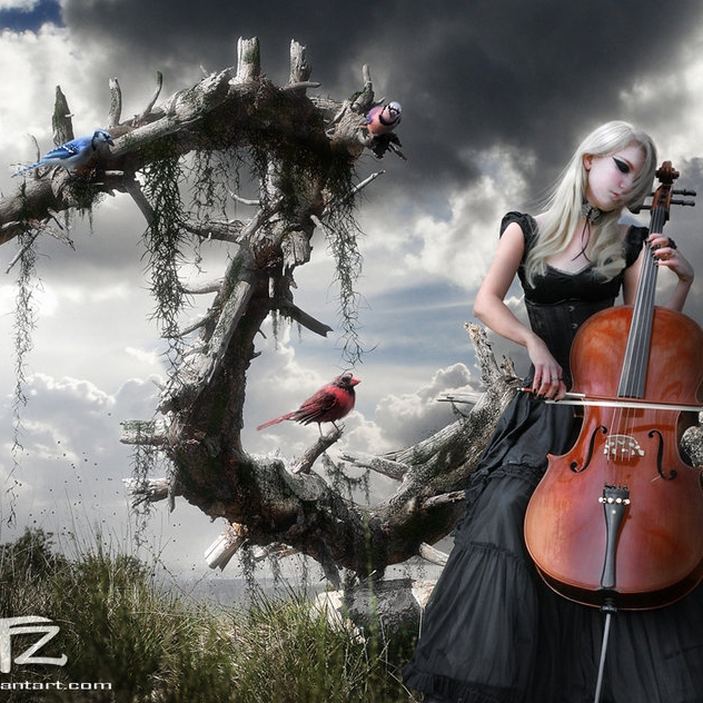 Neoclassical Music Mix to Delight the Senses
