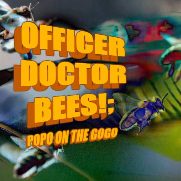 OFFICER DOCTOR BEES!