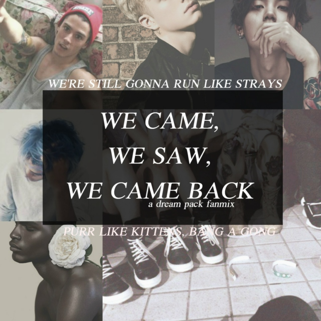 WE CAME, WE SAW, WE CAME BACK