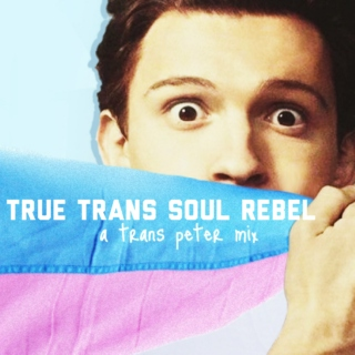 true trans soul rebel: a trans peter mix