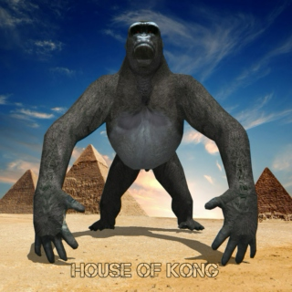 HOUSE OF KONG