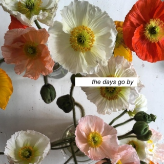 the days go by