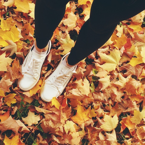 Fall Vibes 2017