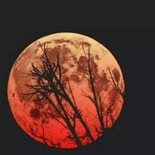 when the moon's rising