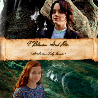 "*~""I Blossom and Die""~* A Severus x Lily Fanmix"