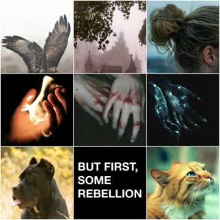 we're the ashes on the ground; an anders/hawke mix.