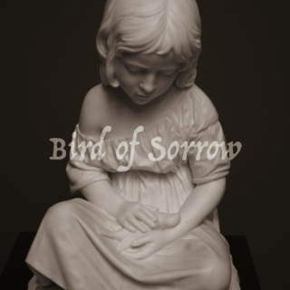 Bird of Sorrow