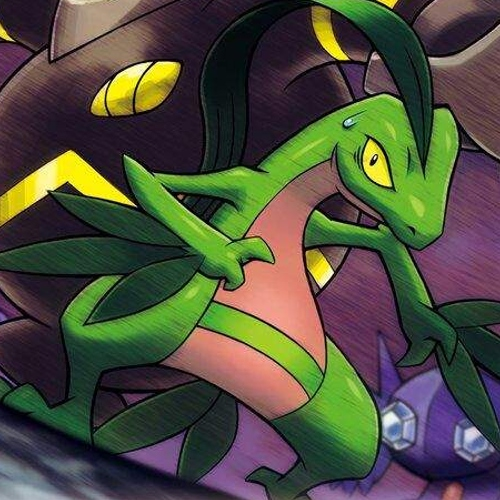 """though the parting hurts... the rest is in your hands"" a pmd grovyle playlist"