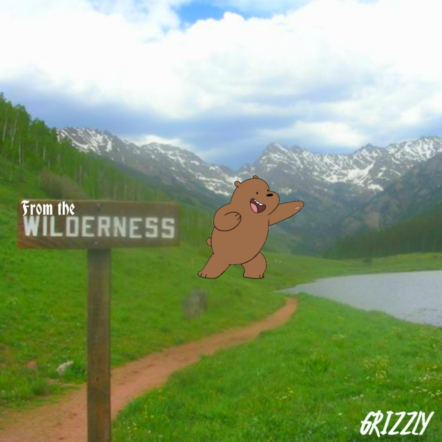 Grizzly - From the Wilderness