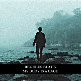 regulus black ▌MY BODY IS A CAGE