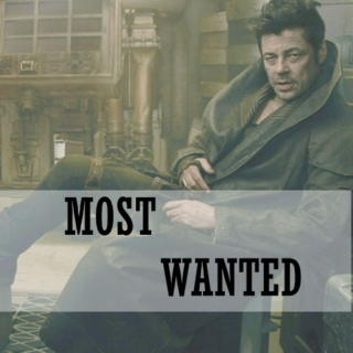 MOST WANTED !