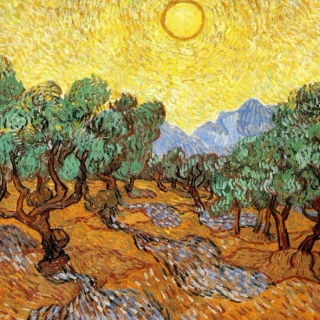 olive trees with yellow sky and sun.
