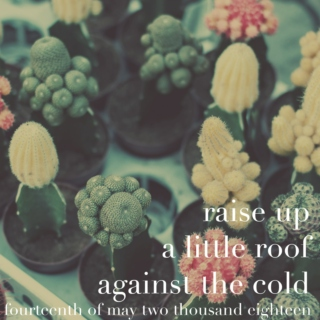 raise up a little roof against the cold - 14 may 2018