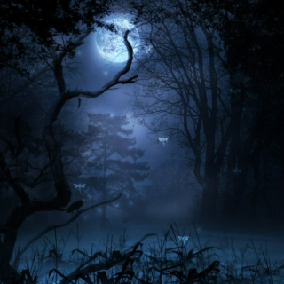 *Blue Moon Swamp