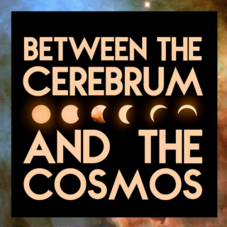 between the cerebrum and the cosmos