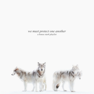 We Must Protect One Another: House Stark Epic Music Fanmix