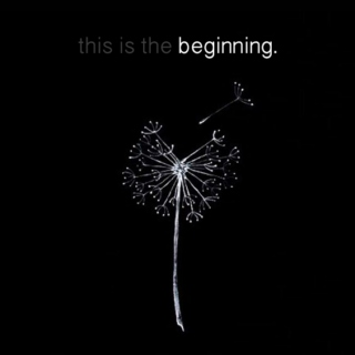 this is the beginning.