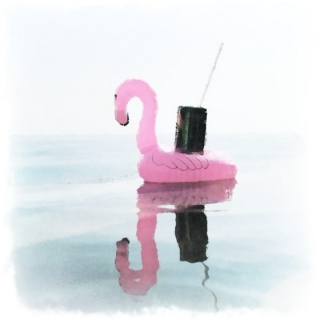 pink flamingo pool floaty