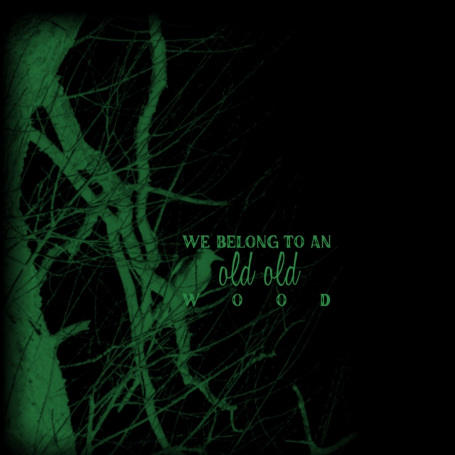 we belong to an old old wood