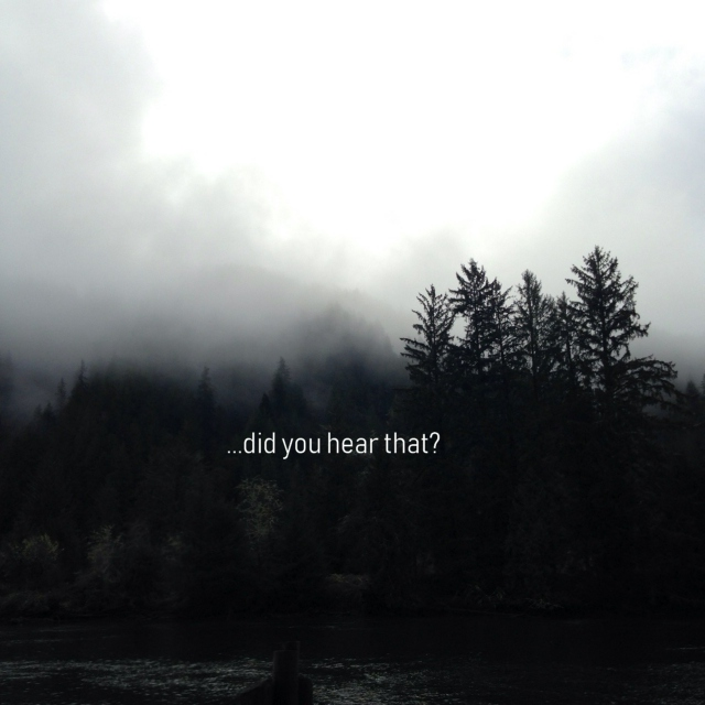 ...did you hear that?
