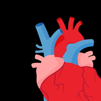 Let Go Your Heart