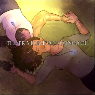 the privilege of loving you