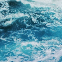 these waters are not empty