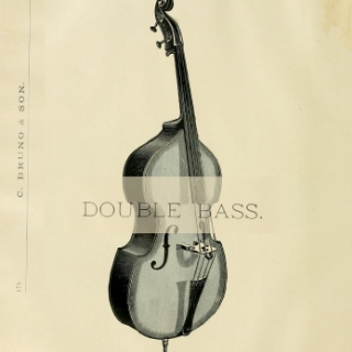 Classical Double Bass