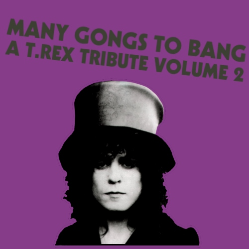 Many Gongs To Bang: A T. Rex Tribute Volume 2