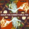 Down The Rabbit Hole Mix
